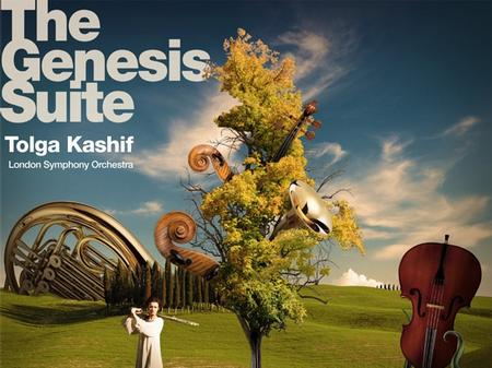 Tolga Kashif