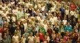 Image 8: Wiltshire Massed Ensemble