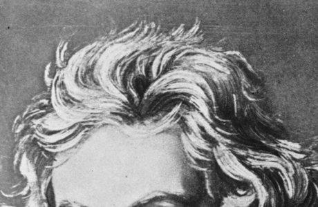 beethoven hair