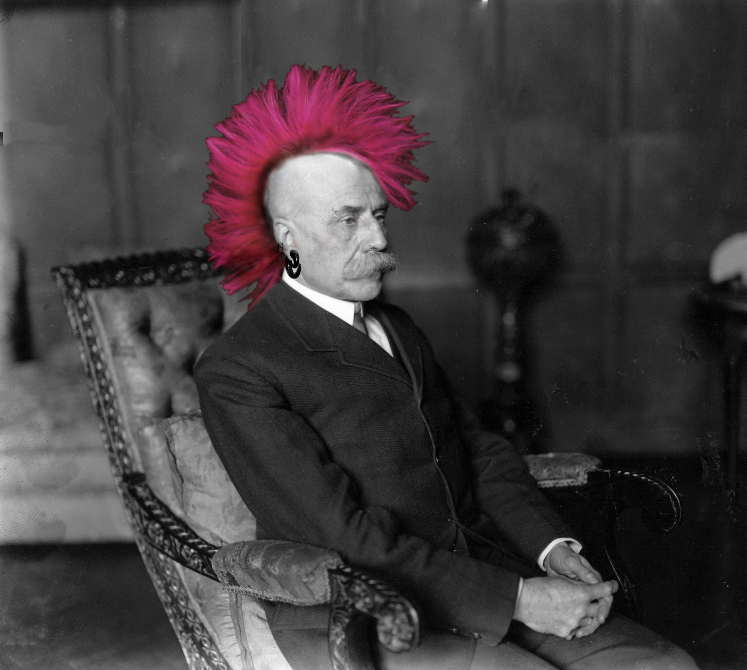 Elgar with a mohawk