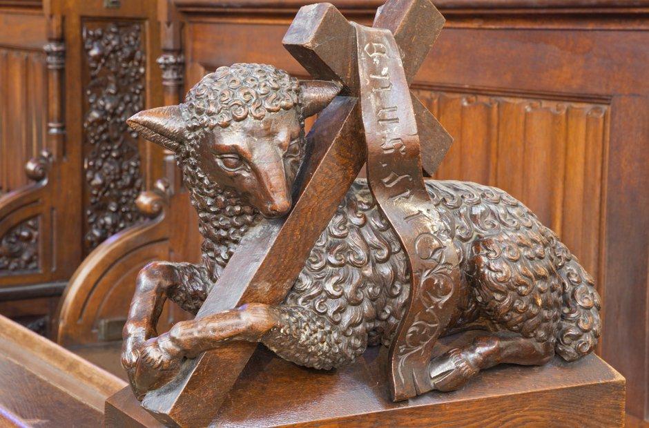Agnus Dei lamb of God sheep