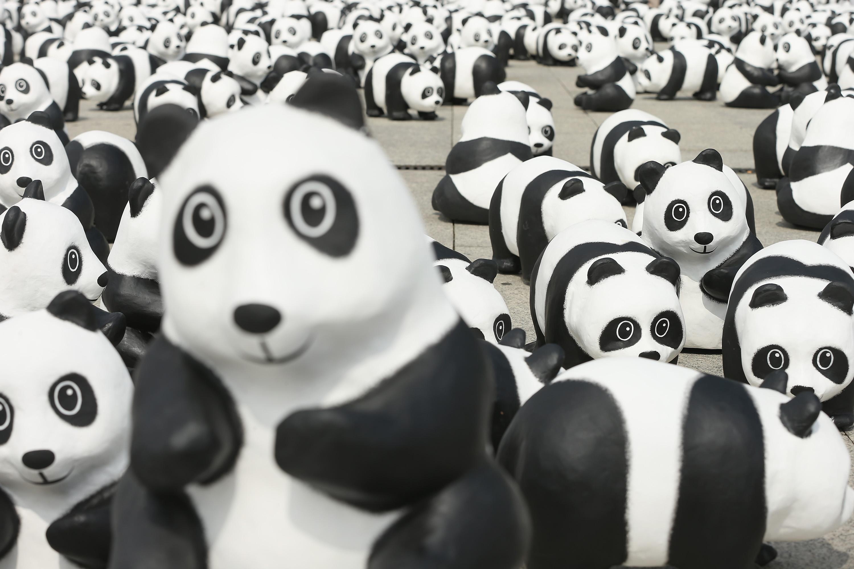 Styrofoam pandas