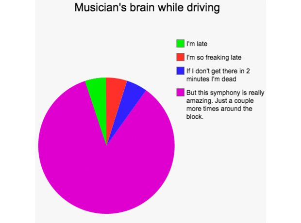 musician pie charts