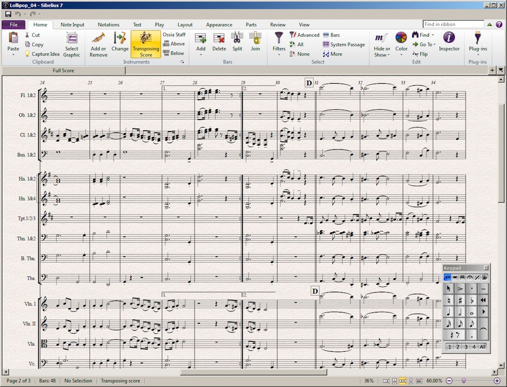 Sibelius 7 screen
