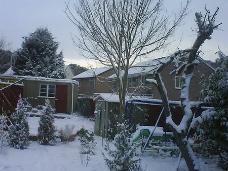 Snow Pictures - 20 December