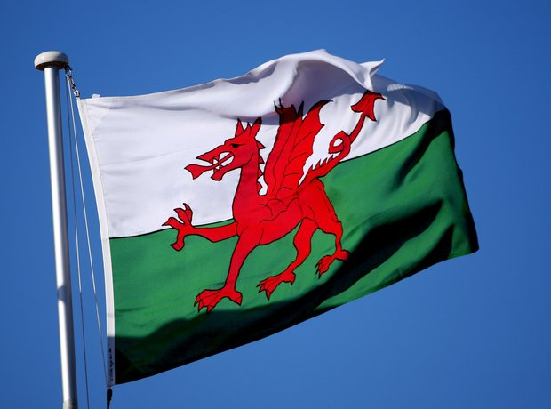 Welsh flag dragon
