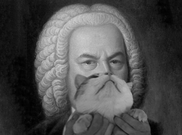 Composers with cats as beards