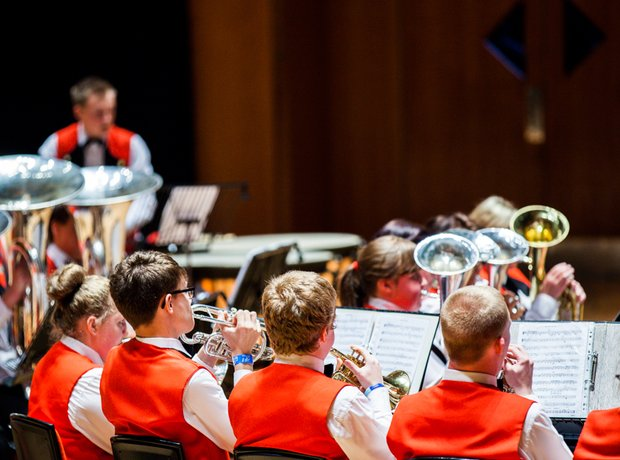 Wardle High School Band