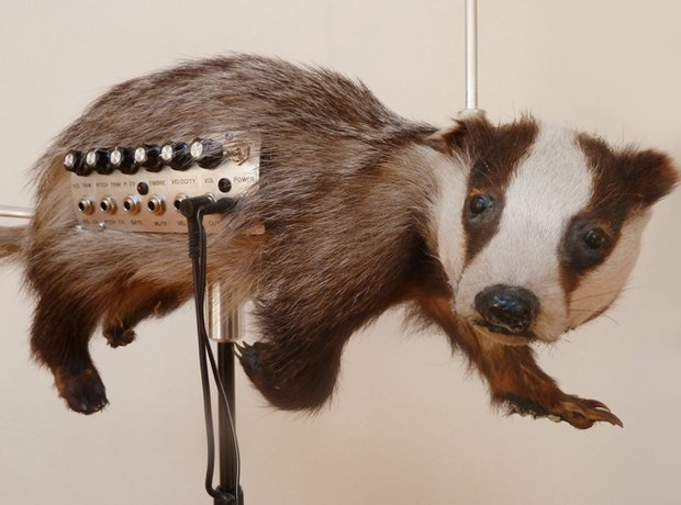 The 11 weirdest musical instruments ever