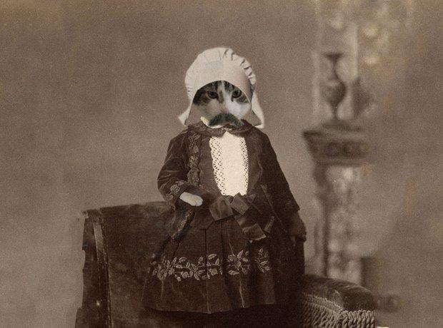 Elgar Moustache
