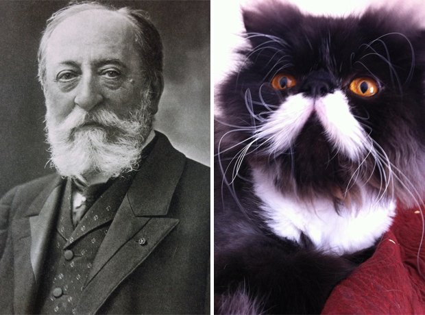 Cat composer Saint-Saëns