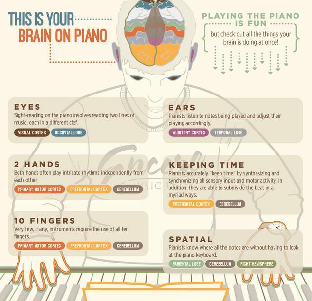 Piano infographic