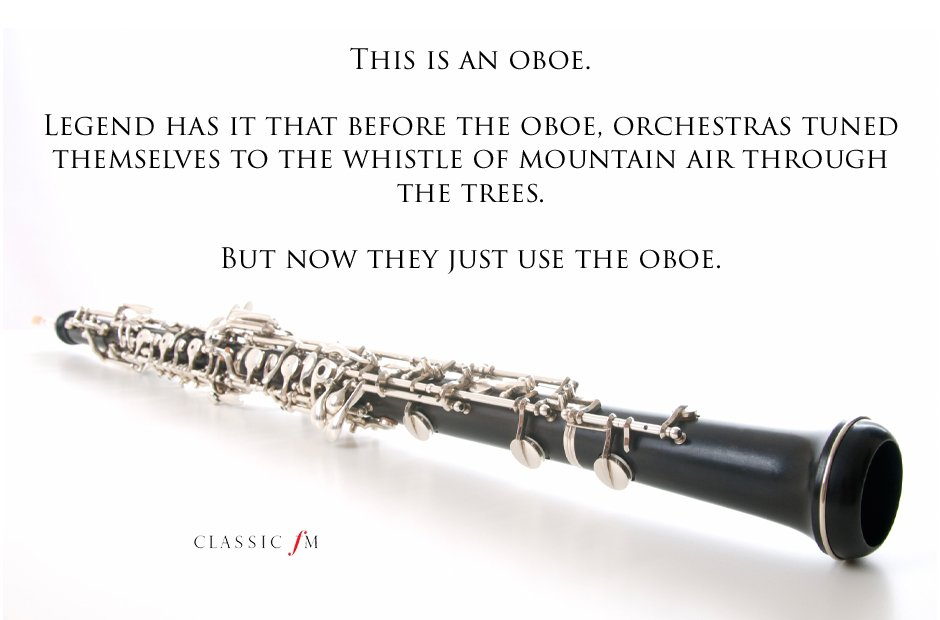 oboe Musical instruments explained: a beginner's g