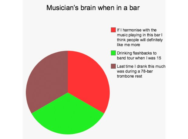 Musicians brains in everyday situations