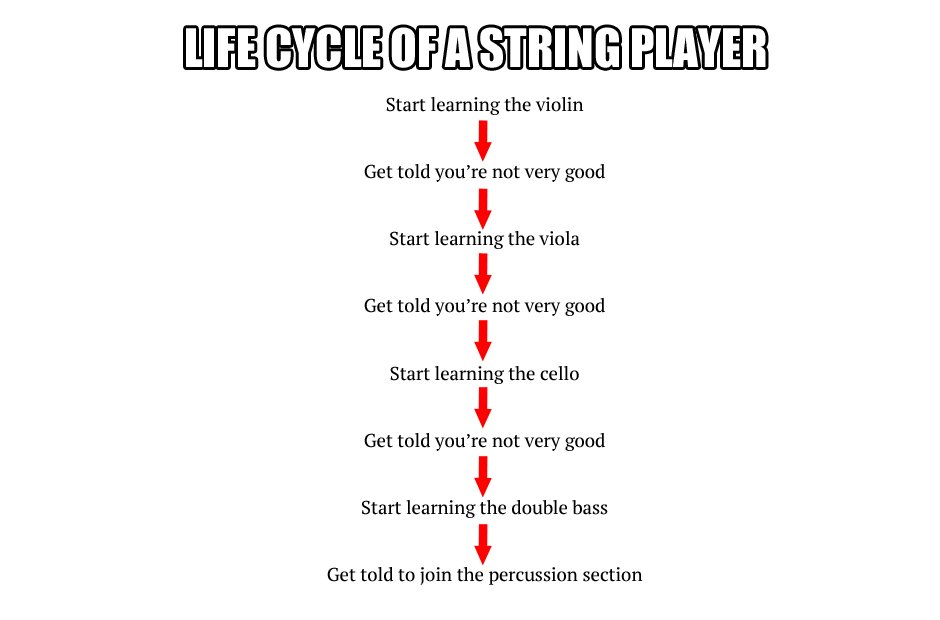 musician life processes