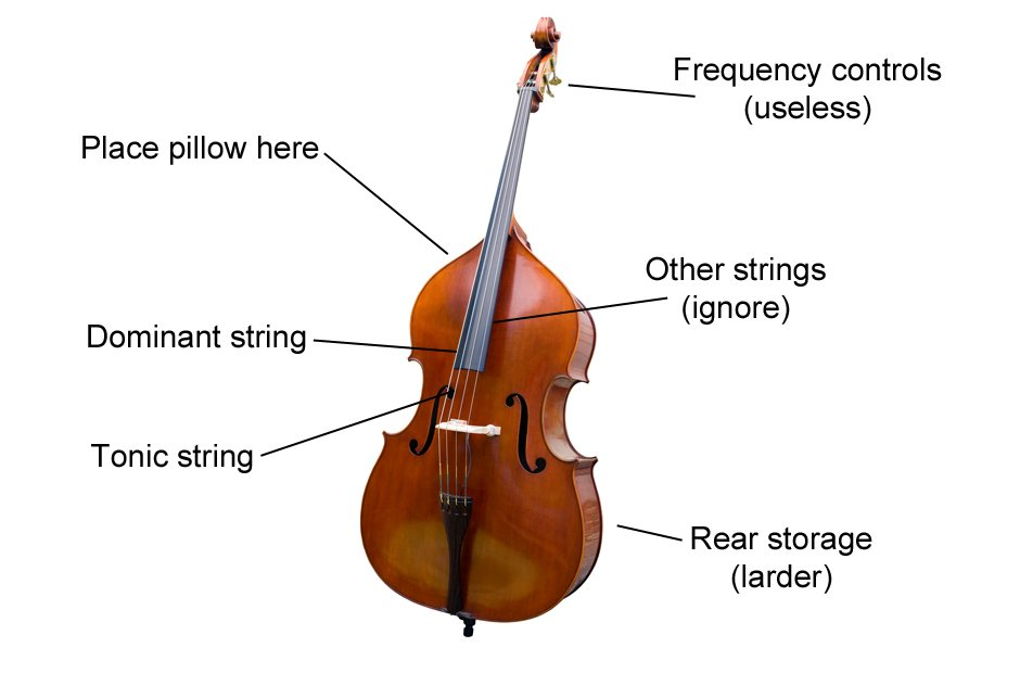 Double Bass diagram