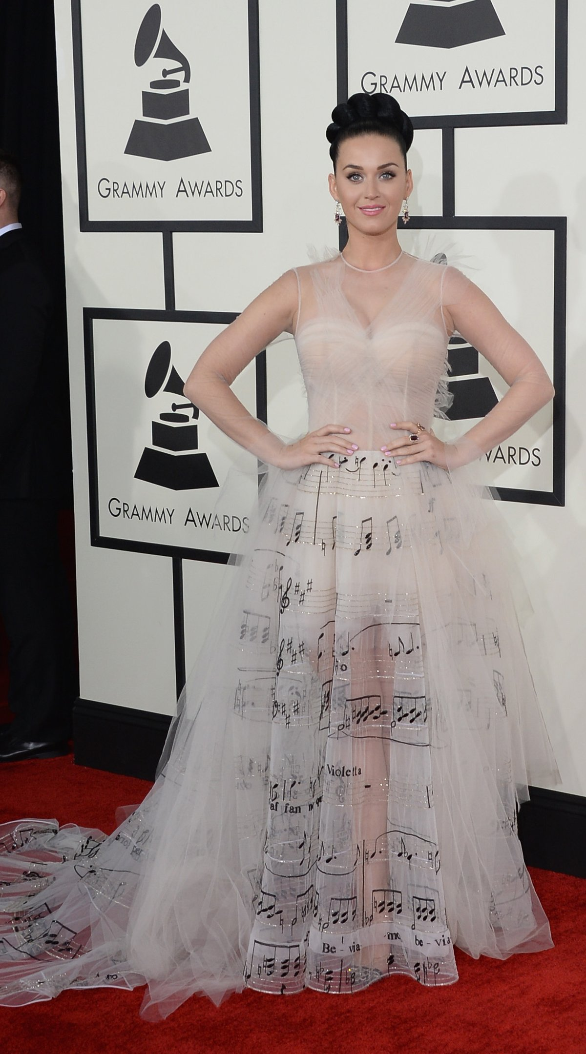 Katy Perry at Grammys - Verdi La traviata dress