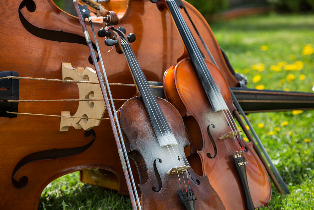 What's the difference between a violin and a viola? - Classic FM